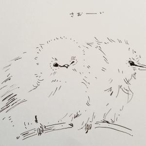 オリジナルイラスト 小鳥