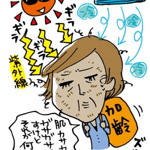 トリニティライン会報誌